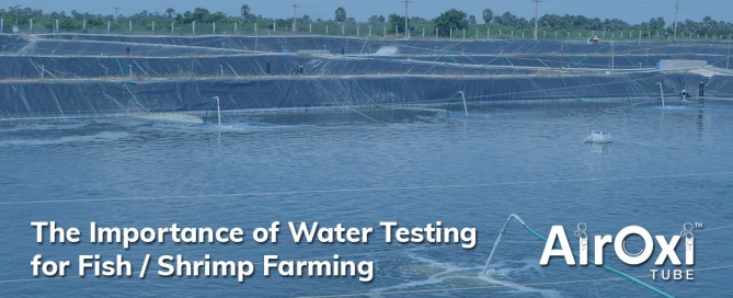 The Importance of Water Testing for Fish / Shrimp Farming