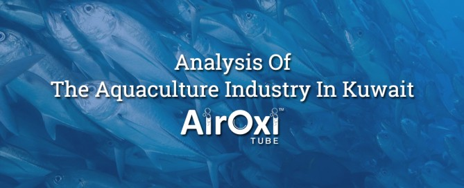 Analysis Of The Aquaculture Industry In Kuwait-AirOxi Tube