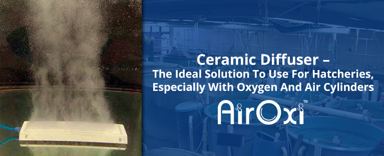 Ceramic Diffuser – The Ideal Solution To Use For Hatcheries, Especially With Oxygen And Air Cylinders