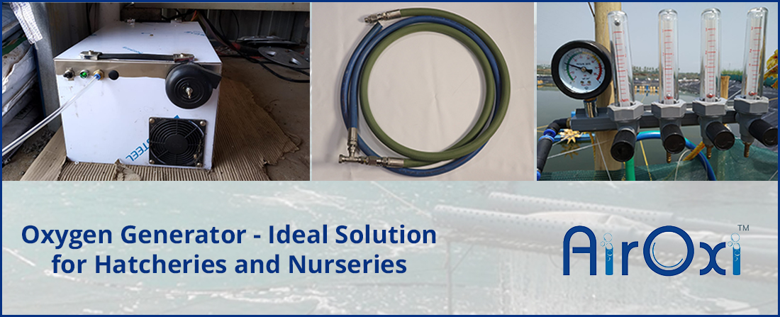Oxygen Generator-Ideal Solution for Hatcheries and Nurseries-AirOxi-Tube-Aquaculture-Aeration-Solutions