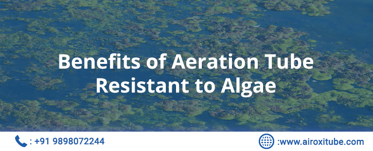 Benefits of Aeration Tube Resistant to Algae