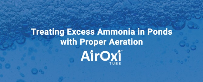 Treating Excess Ammonia in Ponds-AirOxi Tube