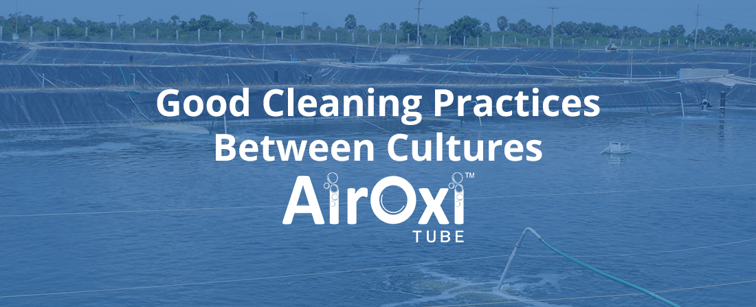 Good Cleaning Practices Between Cultures-AirOxi Tube