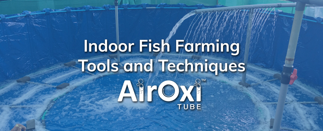 Indoor Fish Farming Tools and Techniques-AirOxi Tube
