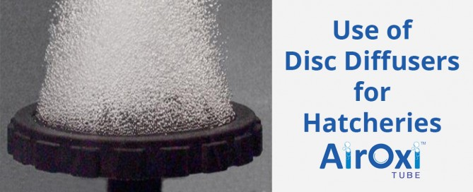 Use of Disc Diffusers for Hatcheries-AirOxi Tube