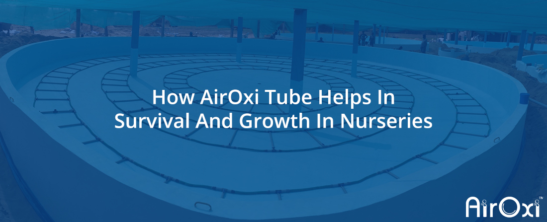 How AirOxi Tube Helps In Survival And Growth In Nurseries