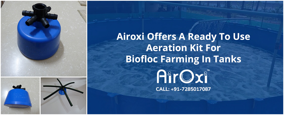 Airoxi Offers A Ready To Use Aeration Kit For Biofloc Farming In Tanks