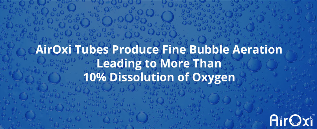 AirOxi Tubes Produce Fine Bubble Aeration Leading to More Than 10% Dissolution of Oxygen