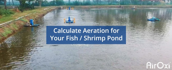 Calculate Aeration for Your Fish and Shrimp Pond-AirOxi Tube