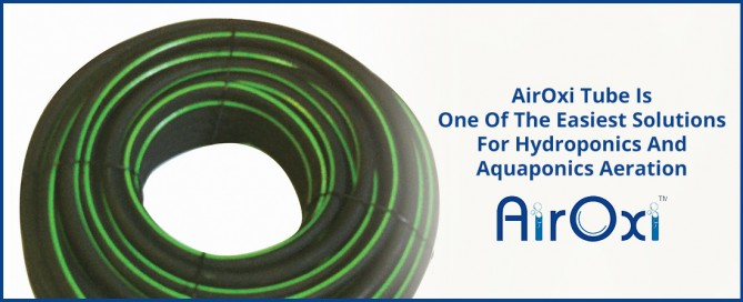 AirOxi Tube Is One Of The Easiest Solutions For Hydroponics And Aquaponics Aeration-AirOxi Tube