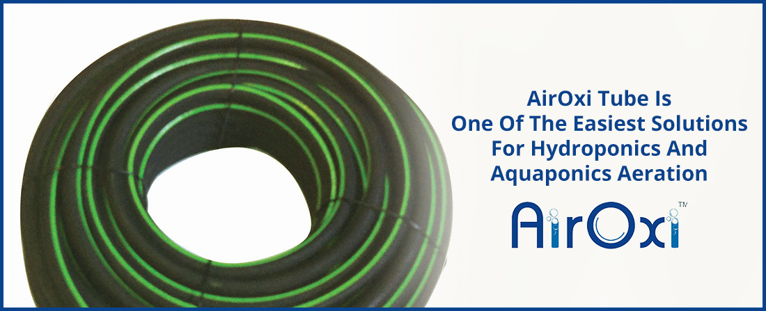 AirOxi Tube Is One Of The Easiest Solutions For Hydroponics And Aquaponics Aeration