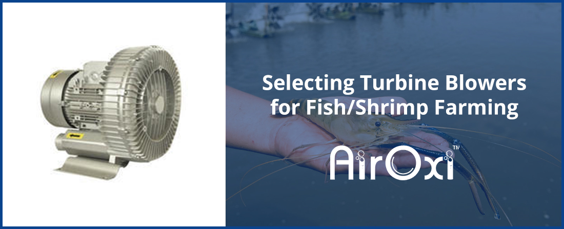 Selecting Turbine Blowers for Fish/Shrimp Farming