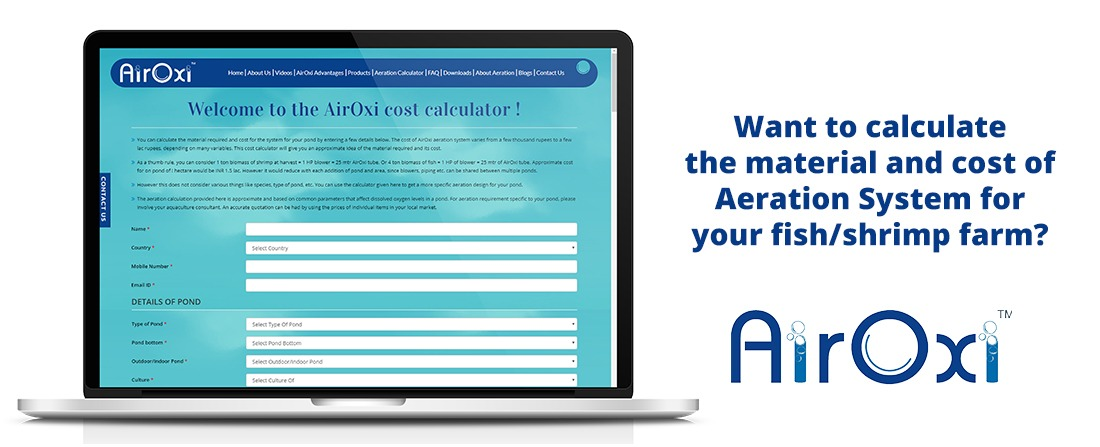 Want to calculate the material and cost of Aeration System for your fish/shrimp farm?  Simple! Just use our online AirOxi Calculator for Biofloc Fish Farming