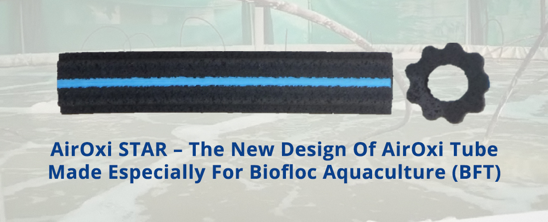 AirOxi STAR – The New Design Of AirOxi Tube Made Especially For Biofloc Aquaculture (BFT)
